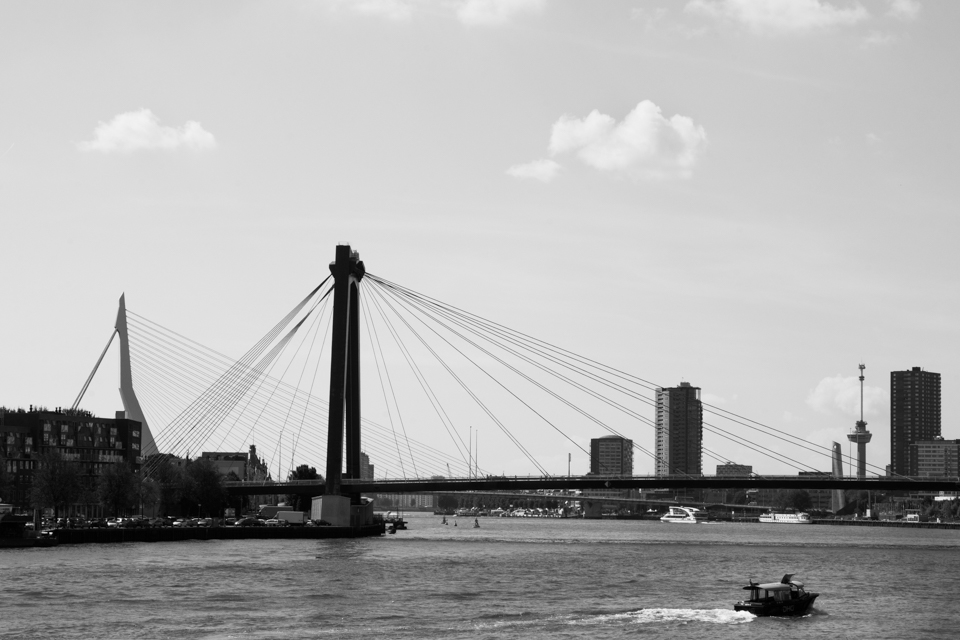 ©ZW010-2626 - Willemsbrug Erasmusbrug Rotterdam zwart wit foto
