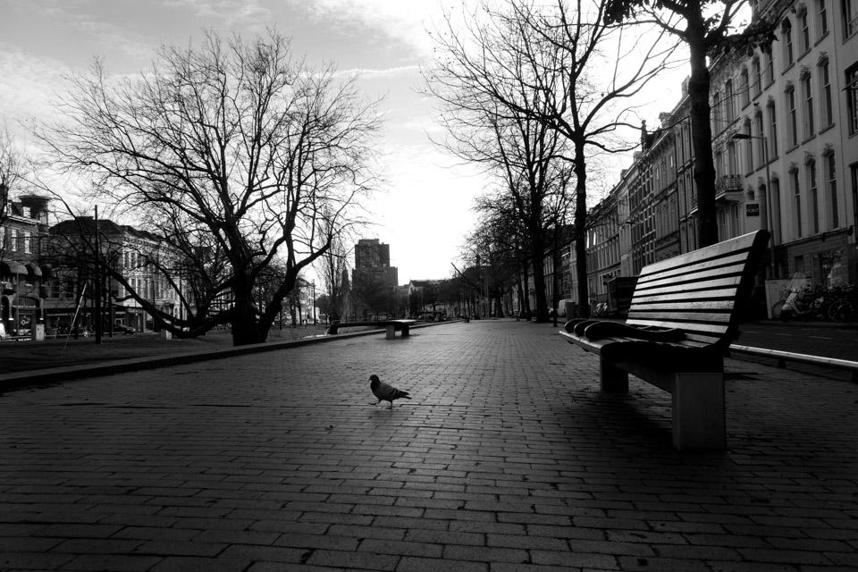 @ZW010 -1985 Westersingel zwart wit foto Rotterdam